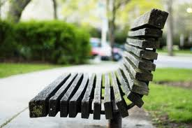 Perspective from a Park Bench