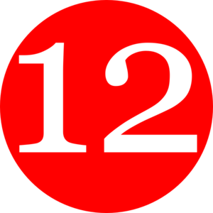 A New 12-Days of Christmas in 1 Day